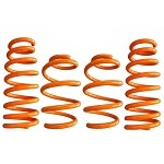 ARK Performance GT-F Lowering Springs - Mitsubishi Evo X 08-16