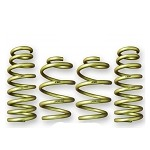 ARK Performance GT-S Lowering Springs - Lexus IS 250 / 350 14+
